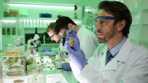 videoblocks biochemist researcher examine corn seed genetic engineering biotechnology lab r g62ok3l thumbnail full11 300x169 - You Can Now Make Money Selling Your DNA With Zenome Project