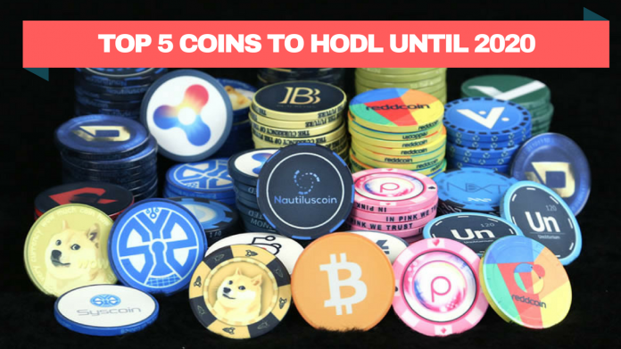 Litecoin (LTC) and 4 other Coins to HODL until 2020