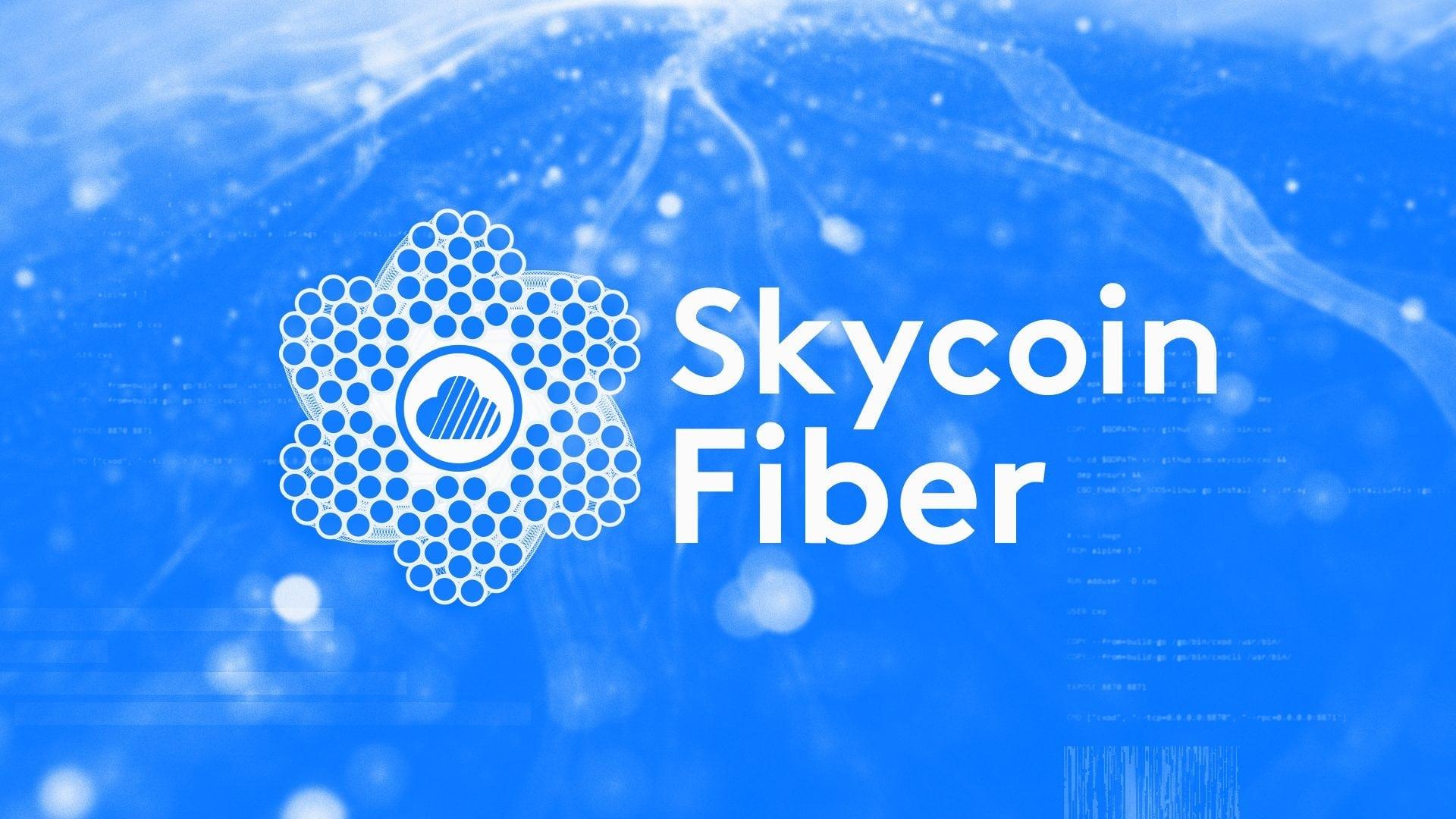 skycoin fiber - Skycoin Blockchain Company Wants To Emerge On The South Korean Market