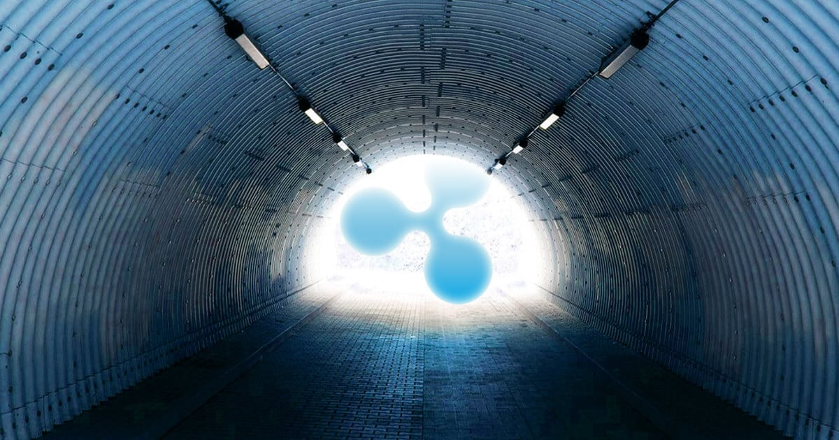 ripple xrapid launch next month social - Ripple's Chris Larsen Believes Globalization Is Not A Bad Thing When It Involves Goods, Data, And Money