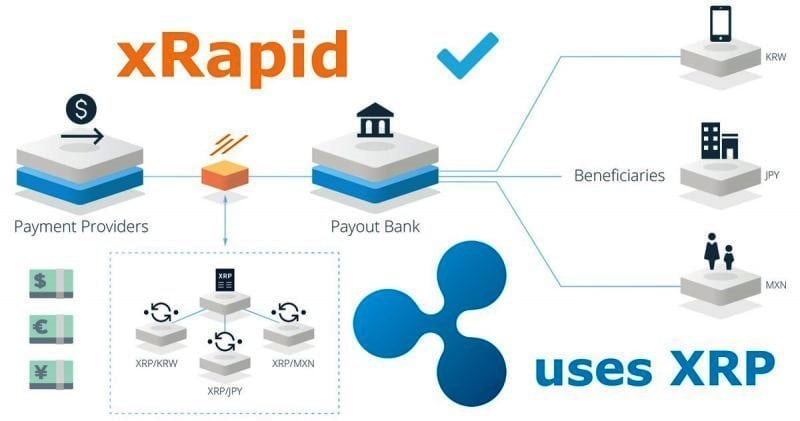 Ripple xRapid platform 800x421 1 - Ripple Vs. Bitcoin: Brad Garlinghouse Says XRP Is 1,000 Times Faster And Cheaper Than BTC