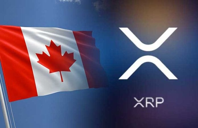 Ripples Crypto Coin XRP Gets Over 130 New Trading Pairs on Canadian Exchange CoinField 696x449 - Ripple Expansion: Canada's CoinField Exchange Adds Over 130 XRP Pairs