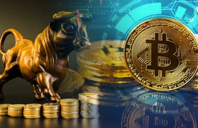 Bitcoin BTC Bulls Are Prepping to Turn the Tide on the Bears But When 696x449 - Bitcoin (BTC) Price May Surge Ten Times – Invest At Least 1% Of Your Portfolio In BTC