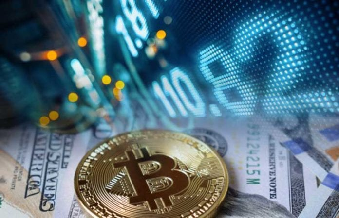 Bitcoin's Dominance Continues to Rise in 2019 - Bitcoin (BTC) Is Expected To Reach $12,000 Soon, Says Crypto Influencer