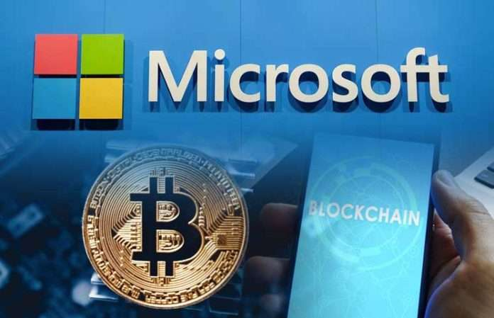 Microsoft39s plans will help recognize the true potential of Bitcoin and Blockchain technology - Bitcoin At $8,000 Is Reportedly Underpriced – Will The Parabolic Run Take BTC To $9.5k? - Microsoft's Involvement