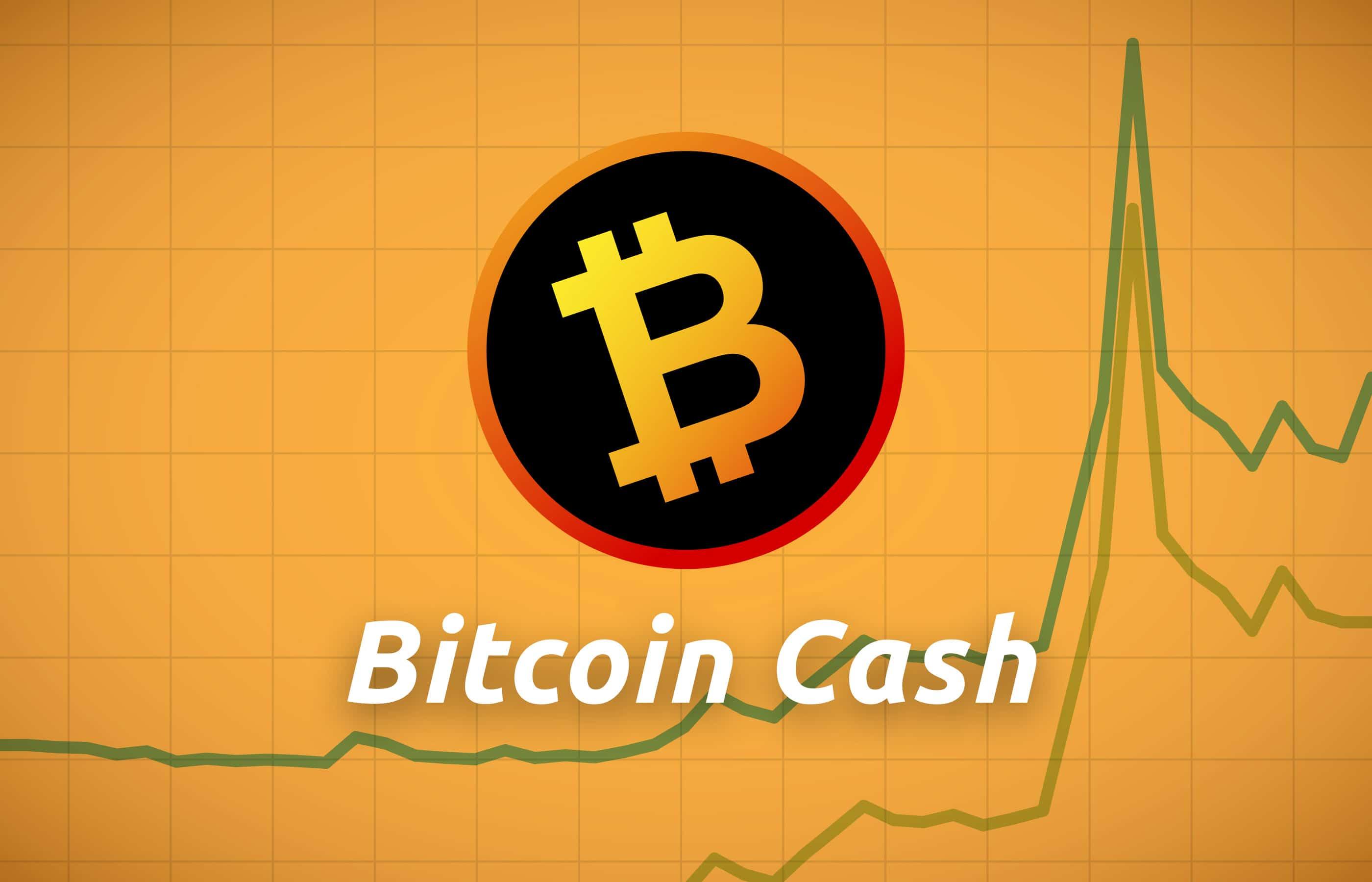 bitcoin cash bch price surged kraken shut down bsv tradings - Bitcoin Cash (BCH) Price Surged Because Kraken Shut Down BSV Tradings