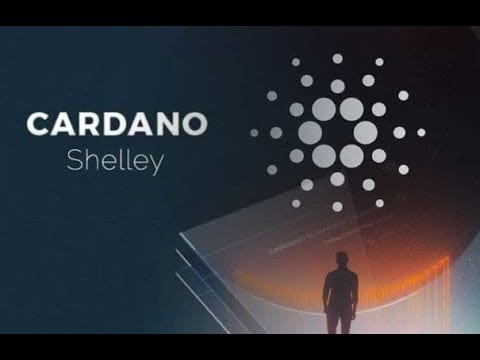 hqdefault - Cardano's Charles Hoskinson Says Shelley Will Change The World