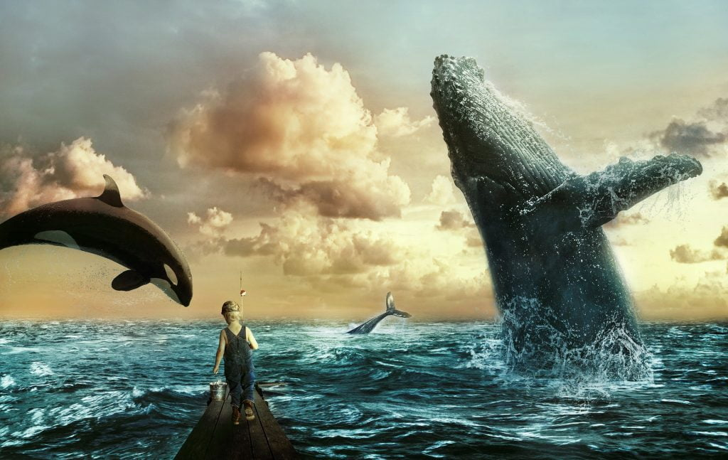 1 fr9c 5Waf5w JBshaBKokg 1024x647 - Bitcoin Whales Signal Suggests That The Richest Crypto Holders Anticipate A Seismic Market Shift