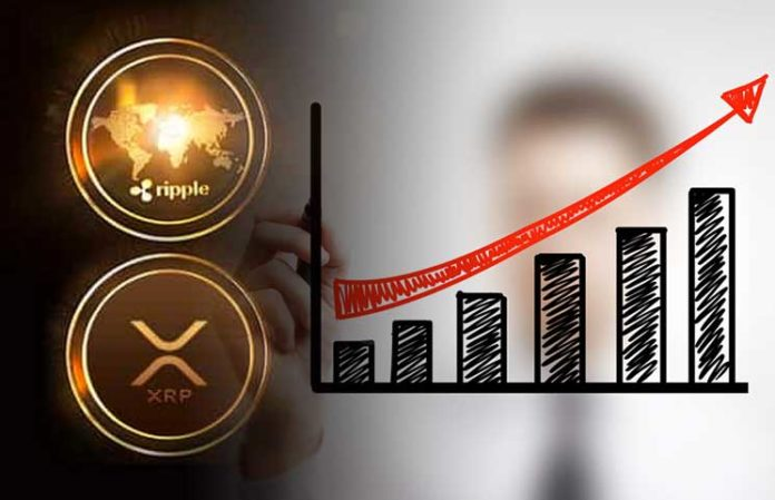 ripples david schwartz compares rise in bitcoin price to xrp coins value growing in the future - Ripple Prediction: XRP's Price Is Reportedly On Its Way To $0.4 - $0.5