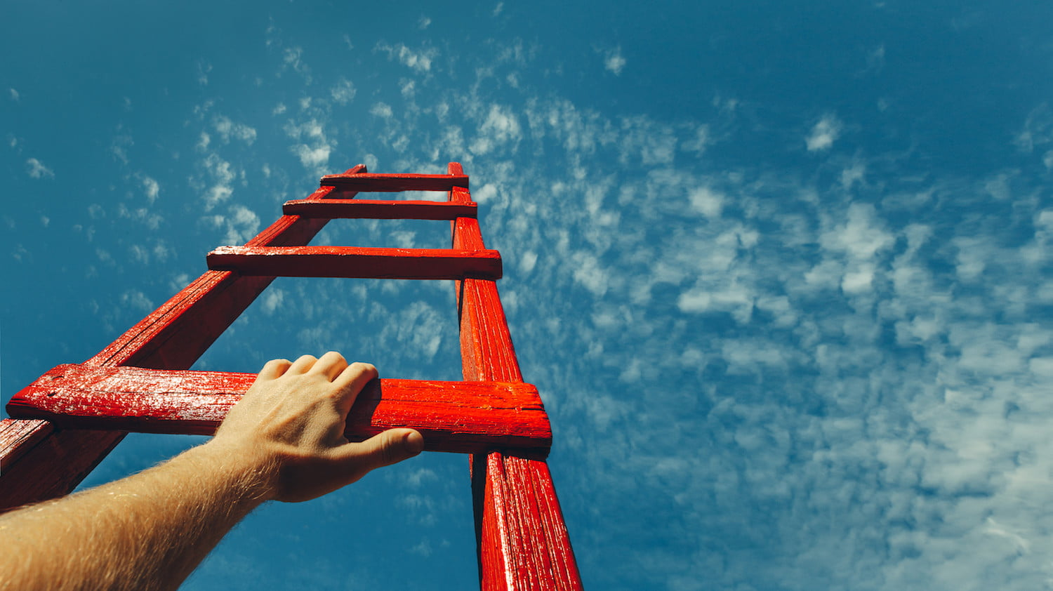 ladder Shutterstock - New Bitcoin And Crypto Warning Has Been Issued - BTC May Fall To $4,800