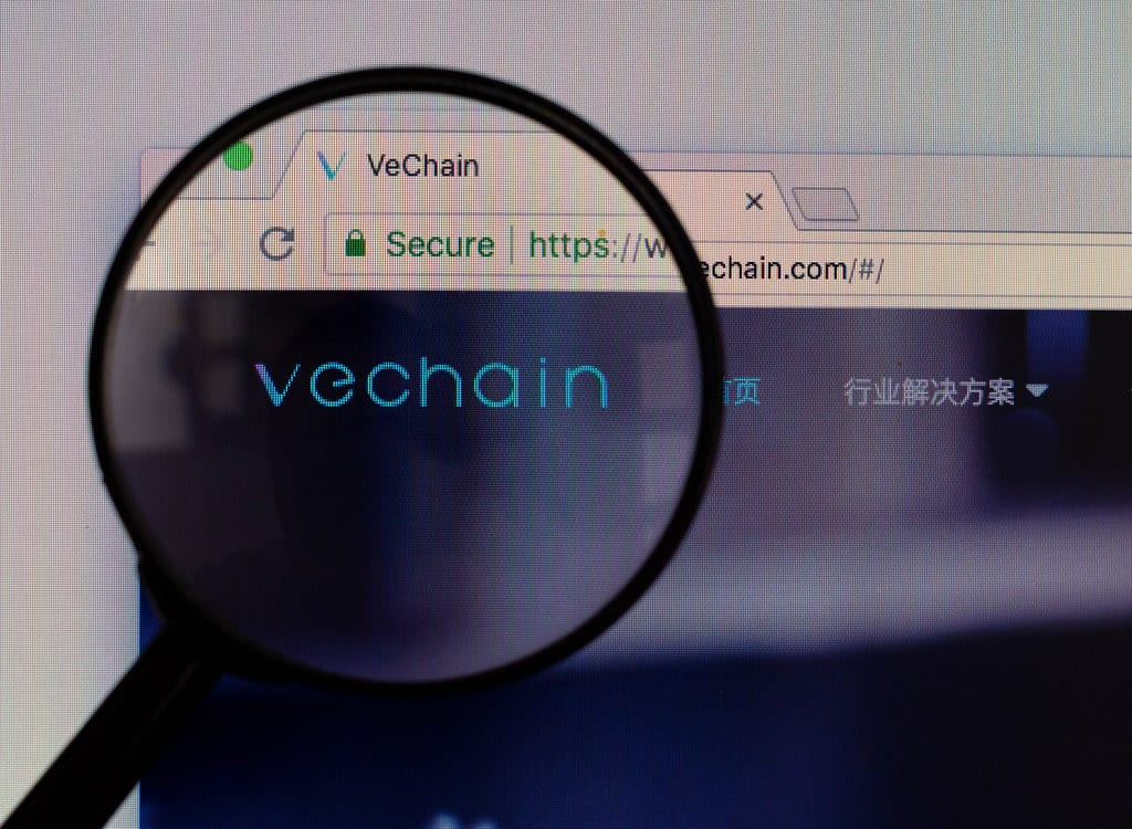44602110302 e32e4e416f b - Is VeChain (VET) Heading For A Correction?