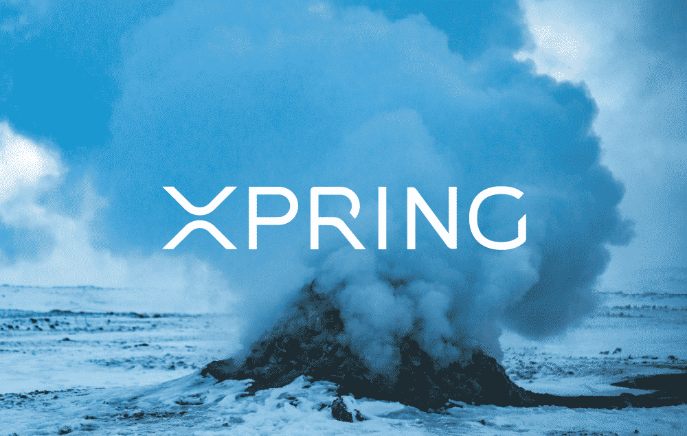 xpring blue - XUMM Is One Of The Best Representatives Of The XRP Ledger