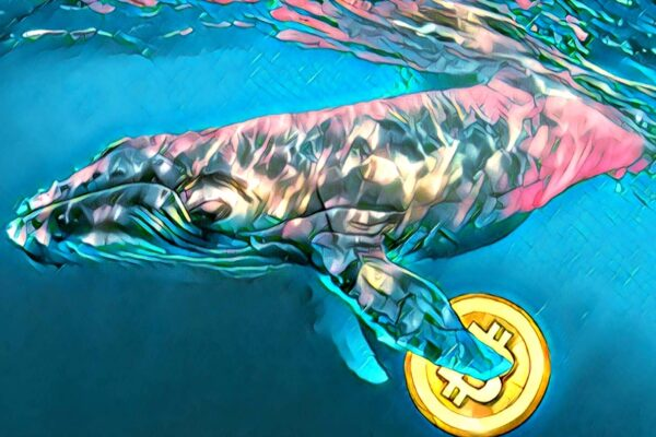 Whales Are Reportedly Fueling Crypto Correction – Here's The Reason