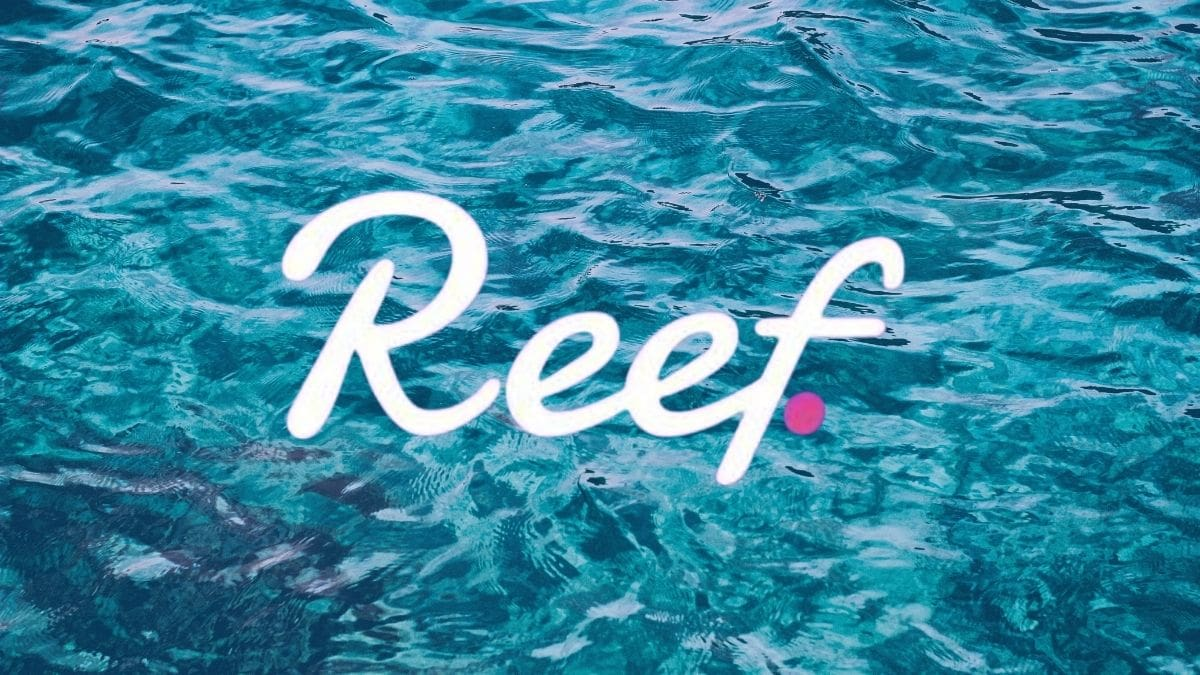 Reef Finance Trades Above $0.01 Following Huobi Listing | CryptoGazette - Cryptocurrency News