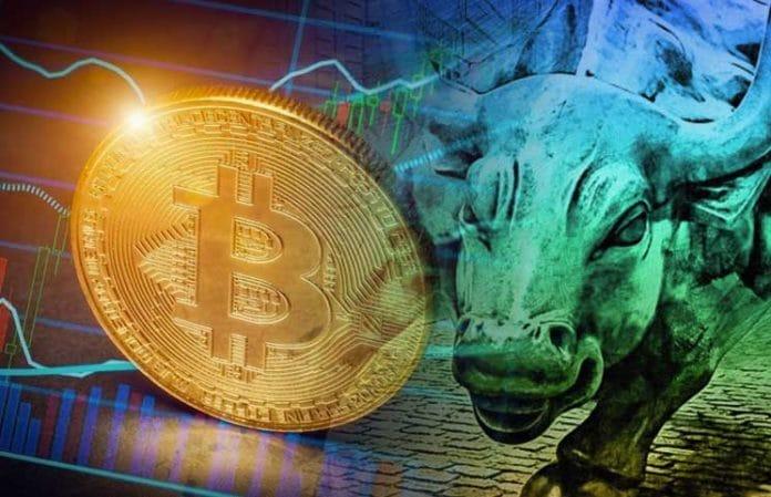 Důvody, proč být býčí, Bitcoin bude růst nad 40 000 dolarů
